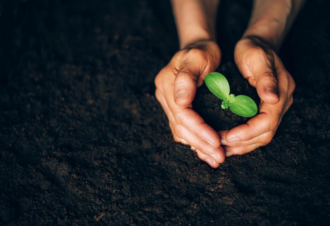 La responsabilidad de AFEPASA con su entorno como premisa básica para encarar el presente y futuro de la entidad