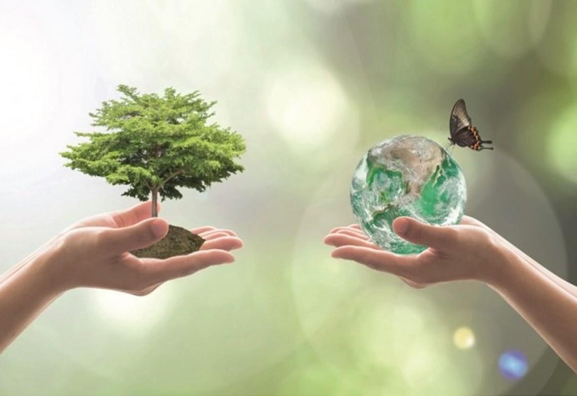Avanzando por la senda correcta hacia un mundo cada día más sostenible